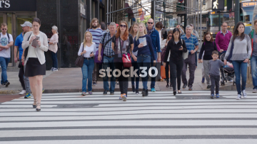 Slow Motion Shot Of Pedestrians On Zebra Crossing In New York, USA