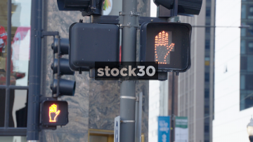 A Stop And Walk Signal In Chicago, USA