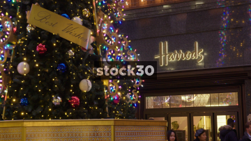 Harrods Department Store Side Entrance And Christmas Tree In London, UK