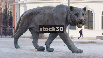 The Tiger Sculpture Near Oslo Central Station, Norway