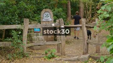 The Entrance To Alderley Edge Woodland, UK