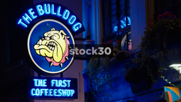 The Bulldog Coffee Shop In Amsterdam, Netherlands