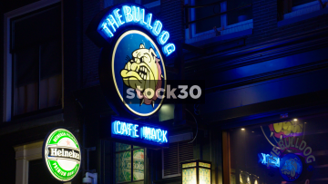 The Bulldog Cafe Mack In Amsterdam, Netherlands