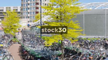 Panning Shot Of Bicycles Outside Rotterdam Blaak Station, Netherlands