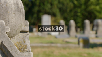 3 Focus Pull Shots In Elmwood Cemetery, Memphis, Tennessee, USA
