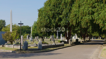 2 Panning Shots In Elmwood Cemetery, Memphis, Tennessee, USA
