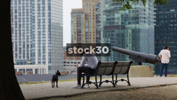 Man With Dog Sitting On Bench Using Phone In Federal Hill Park Overlooking Inner Harbor, Baltimore, Maryland