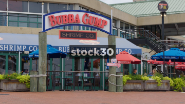 Bubba Gump Shrimp Co Restaurant At Inner Harbor, Baltimore, Maryland, USA