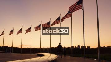 US Flags At The Washington Monument In Washington DC At Dusk, USA