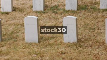 Military Grave Stones In Arlington National Cemetery, Washington DC, USA