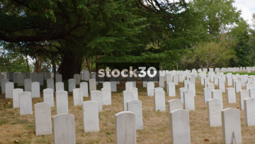 Two Shots Of Military Grave Stones In Arlington National Cemetery, Washington DC, USA