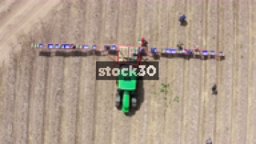 Rotating Overhead Drone View Of Farm Workers Loading Boxes Of Asparagus Onto Tractor, UK