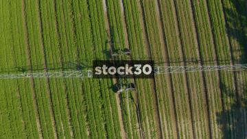 Rotating Overhead Drone Shot Of Crop Spraying Machine On Farm, UK