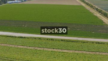 Drone Shot Of Fields Of Crops, UK