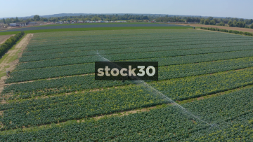 Drone Shot Over Field Of Crops And Crop Spraying Machine, UK