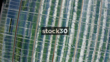 Rotating Overhead Drone Shot Of Large Greenhouses On Farm, UK