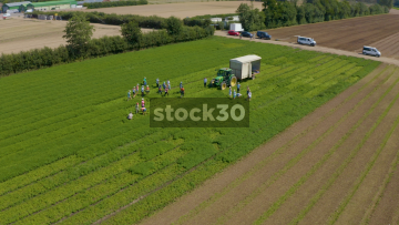 Orbiting Drone Shot Of Farm Workers And Tractor In Field, UK