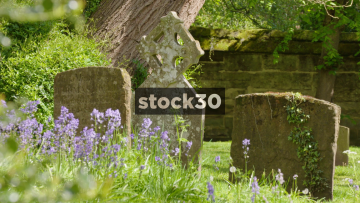 Bluebells In St Mary's Church Cemetery, Warwick, 3 Shots, UK