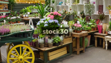 Florists At Borough Market In London, UK