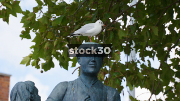Slow Motion Shot Of A Seagull Flying Off A Statue, UK