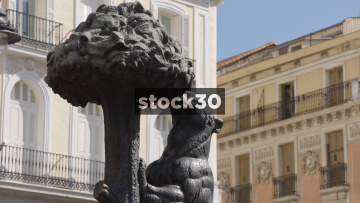 The Bear And The Tree Statue In Madrid, Spain