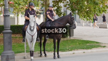 Police Horses And Van In Madrid, Spain